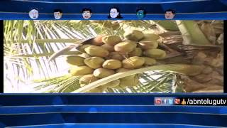 Running Commentary – World Coconut Day to be Celebrated on September 2 (27-08-2015) Photo Image Pic